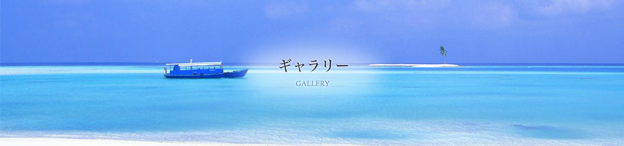 gallery-main