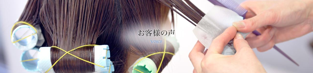 voice-main